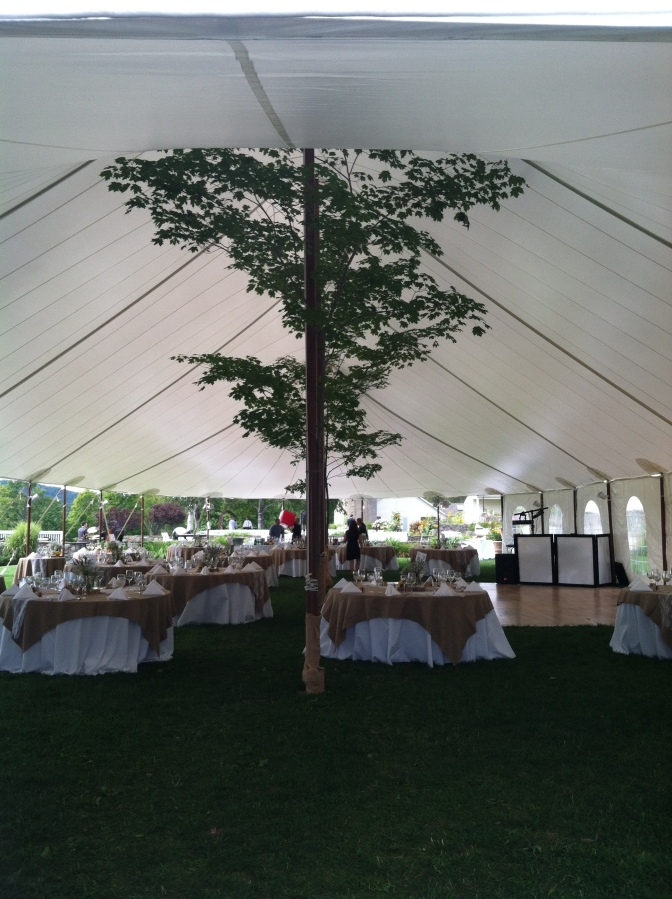 Tent Wedding Specialist