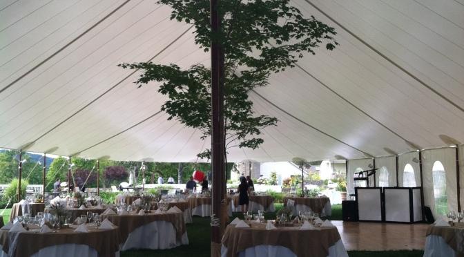 Tent Wedding Specialist