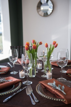 Spring Theme with tulips