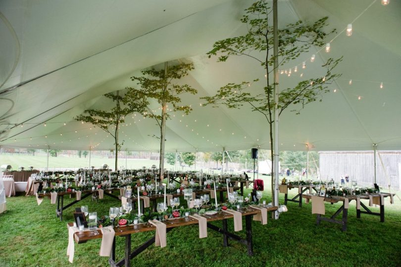 tent set with tables and large trees